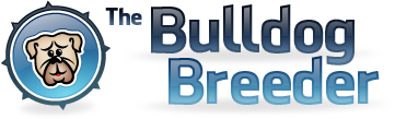 The Bulldog Breeder